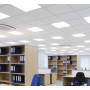 Office LED Panel lamp ECO 36W 595*595 Neutral white