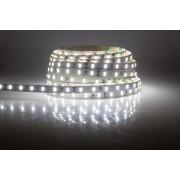 Taśma LED 300 SMD 3528 biała zimna IP65
