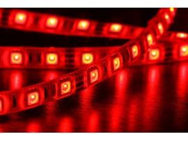 Taśma 600 LED SMD 3528 Czerwona HQ