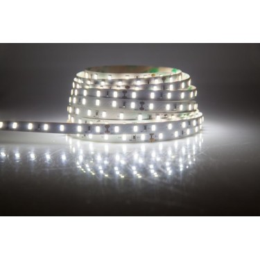 Taśma 300 LED SMD 3528 biała zimna IP65 5mm