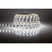LED strip (5m reel) 300 LED SMD 3528 cold white 6lm IP65