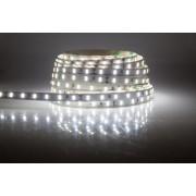 LED strip (5m reel) 300 LED SMD 3528 cold white 6lm IP65