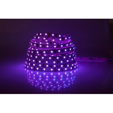 Taśma 300 LED SMD 3528 fioletowa HQ